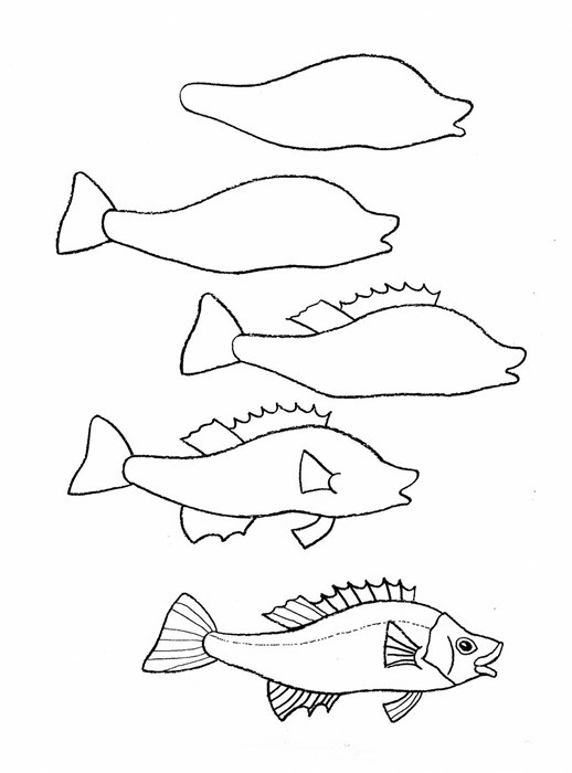 518x700 How To Draw A Simple Fish Step By Step With Pencil, Part 4