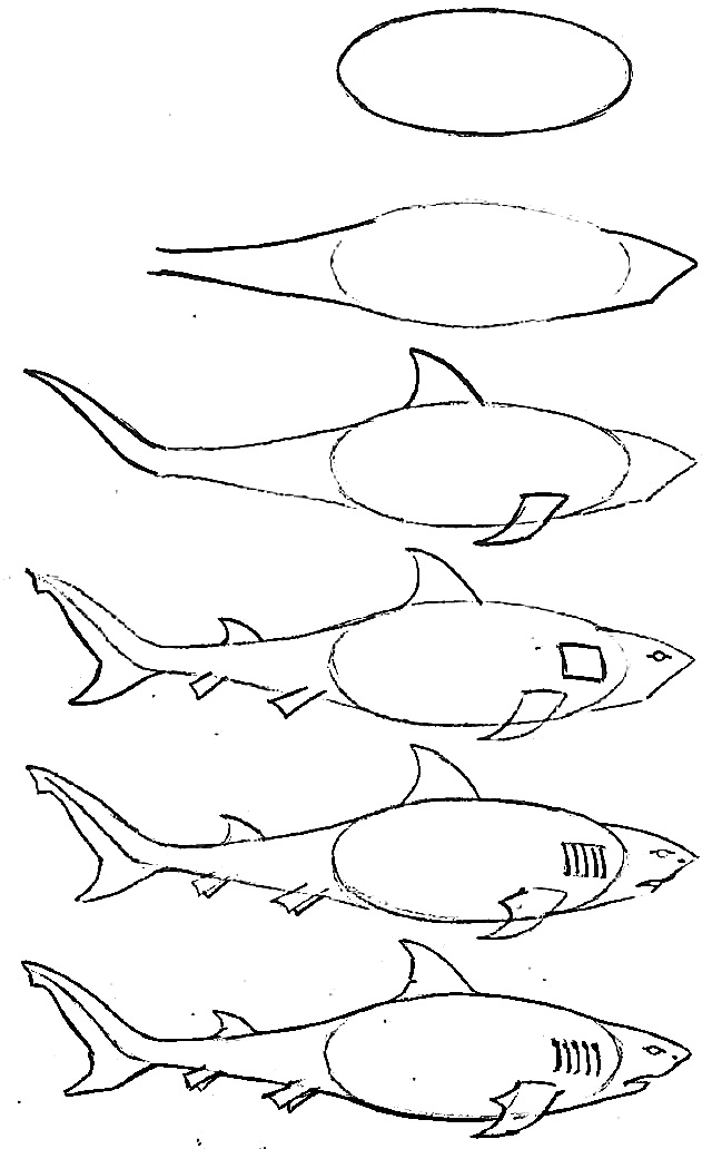 640x1032 drawing of simple fish 10 step by step lessons part 3