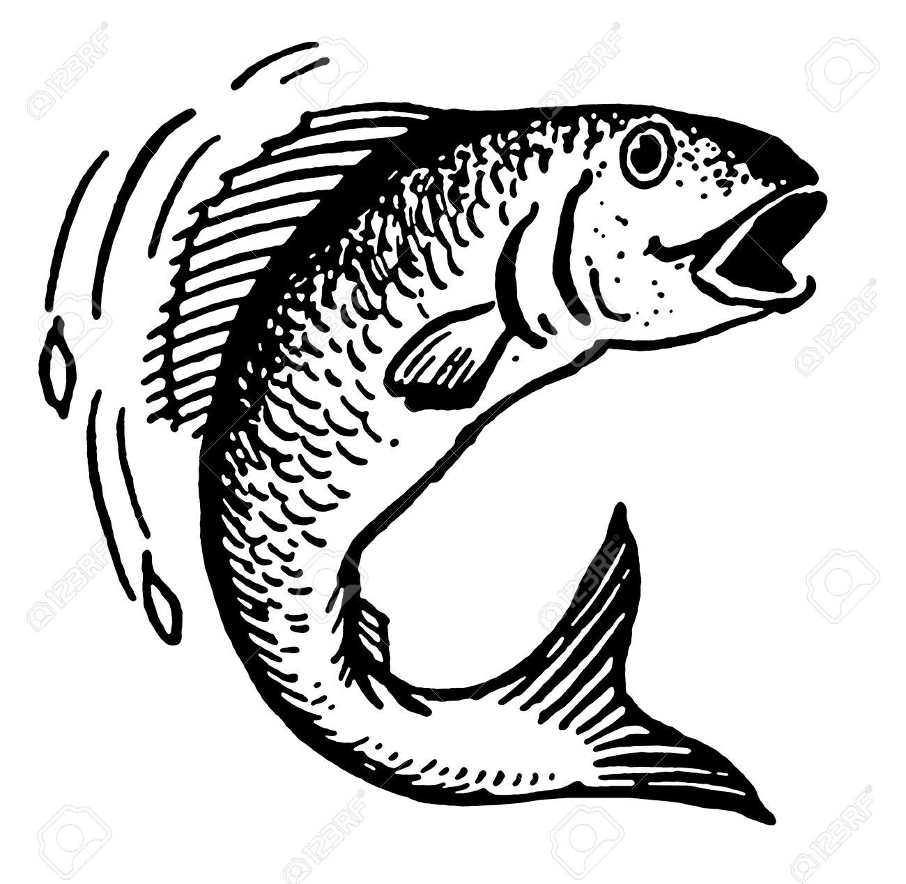 Fish Jumping Out Of Water Drawing