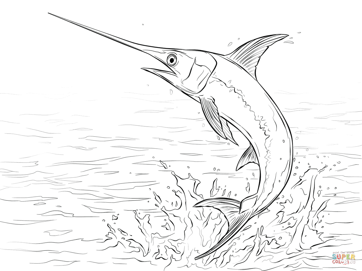1199x899 Drawing A Fish Jumping Out Water Swordfish Jumping Out