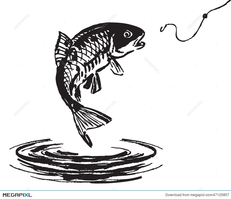 800x689 Fish Jumping Out Of The Water Illustration 47125857