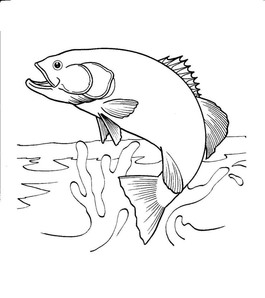 900x1014 Salmon Jumping Out Of Water Coloring Page