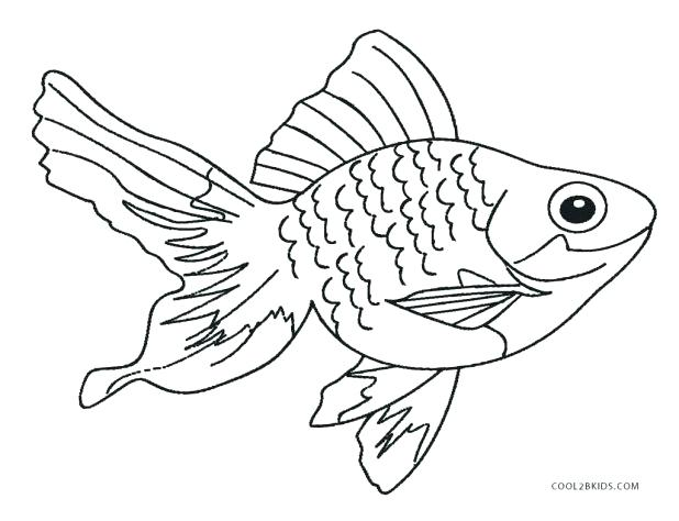 618x474 Fish Images To Color Drawn Goldfish Line 6 Colorful Saltwater