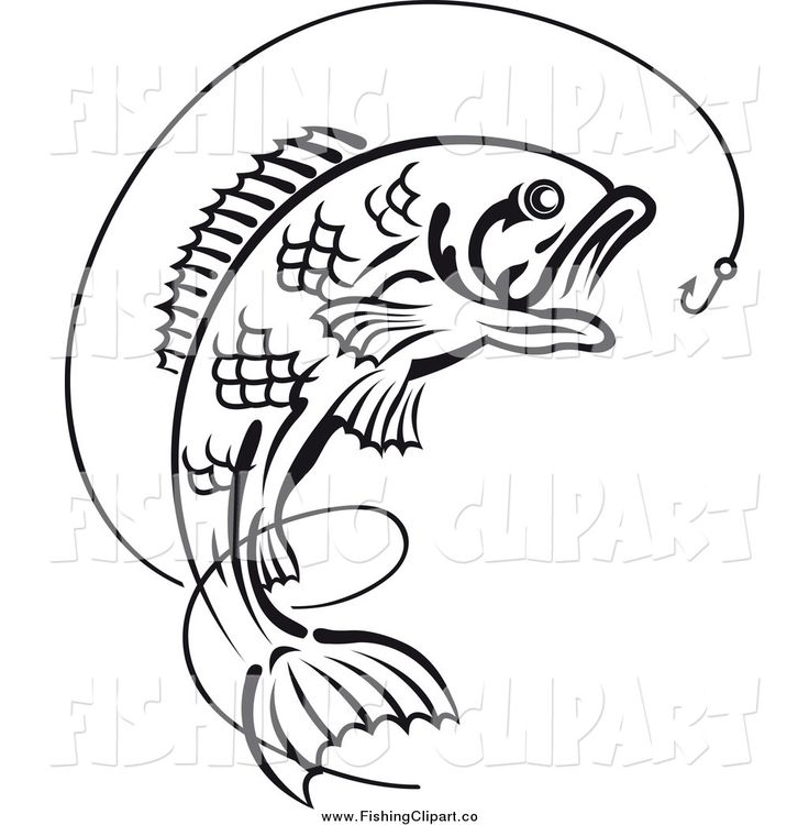 Fish On A Hook Drawing