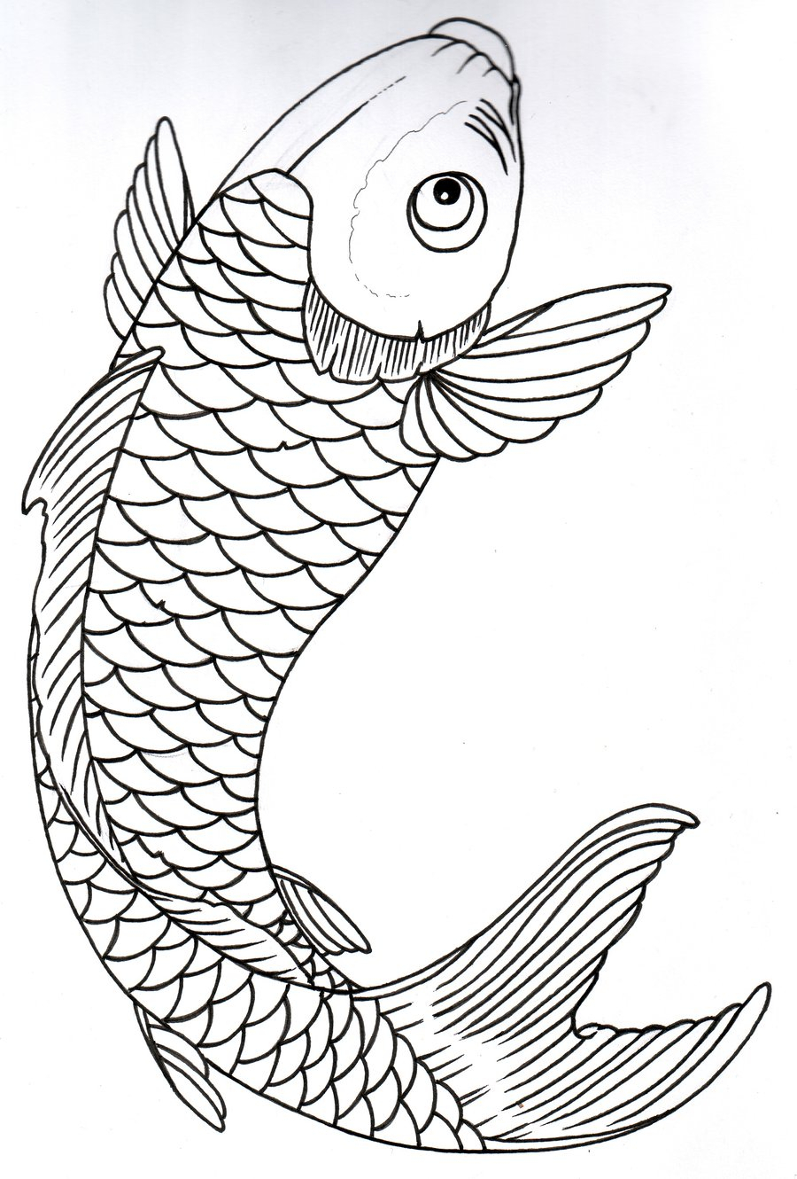 900x1330 Black And White Koi Fish Drawings Drawn Outline