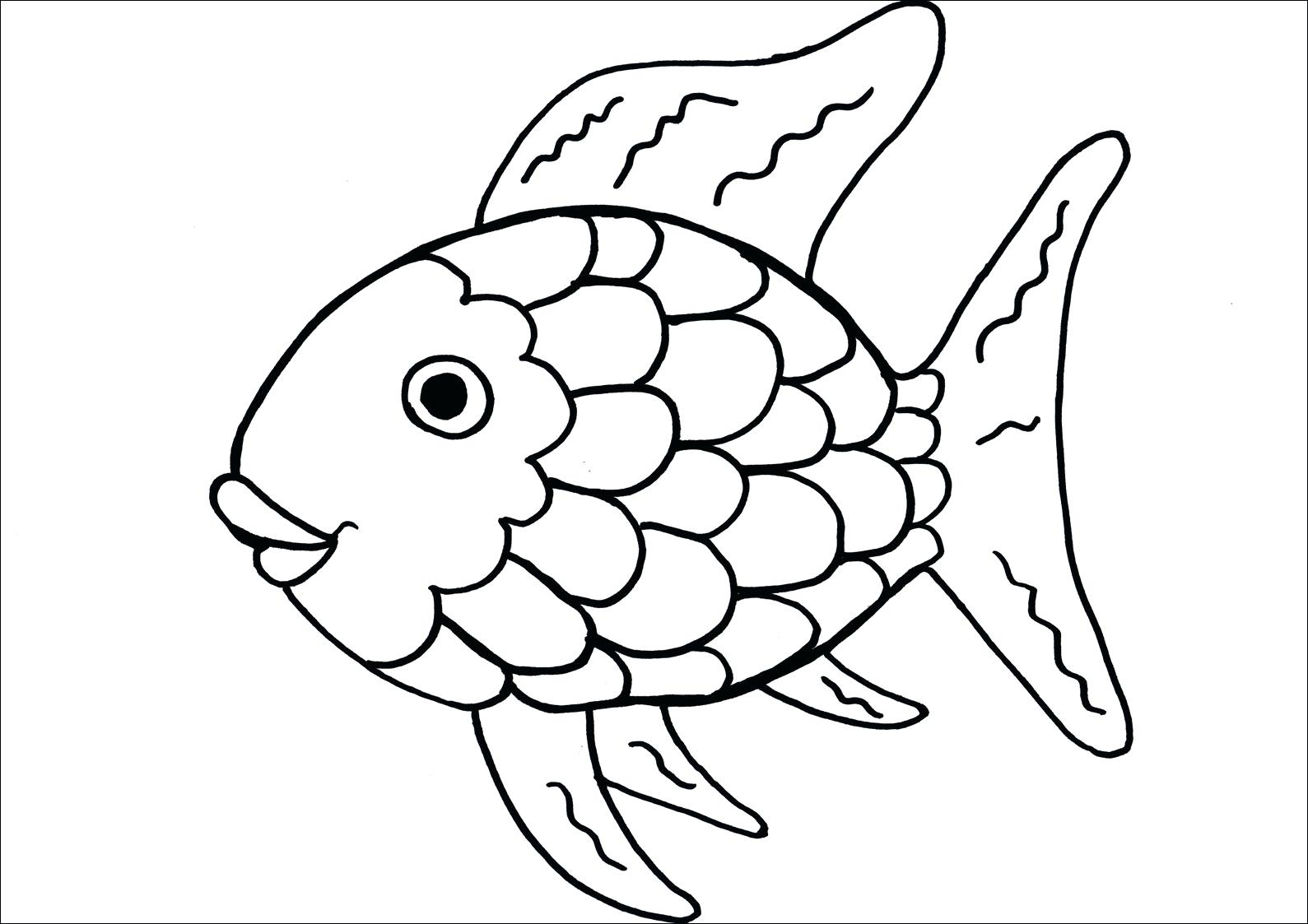 fish scales drawing at getdrawings com free for personal use fish