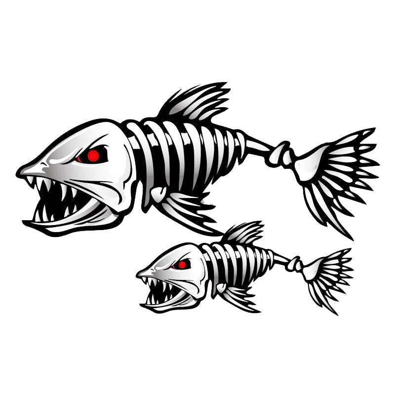 Fish Skeleton Drawing At Getdrawings Free For Personal Use