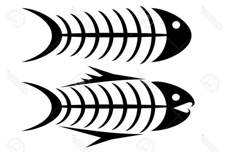 Piranha skeleton tattoo - photo#45