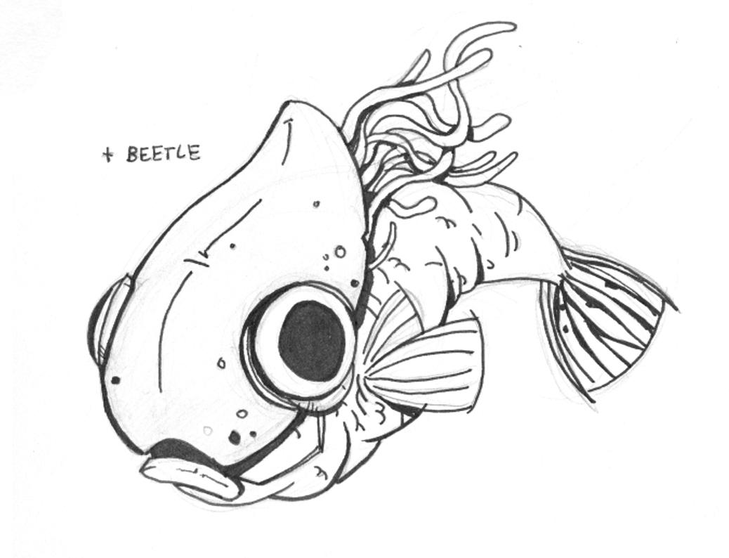 1038x794 Designing Friendly Fish