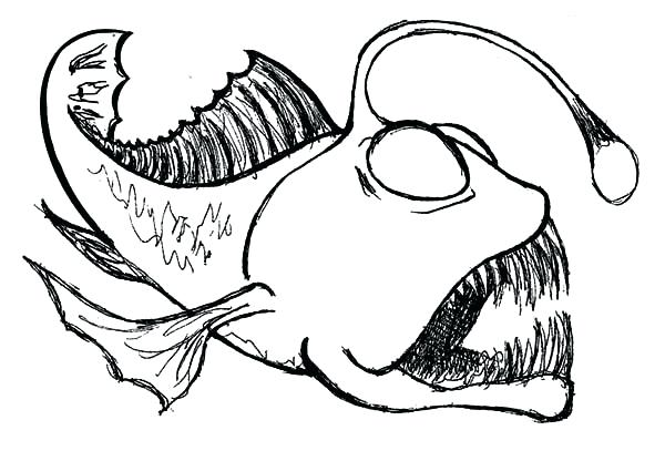 600x407 Fish Images To Color Angler Fish Sketch Of Angler Fish Coloring
