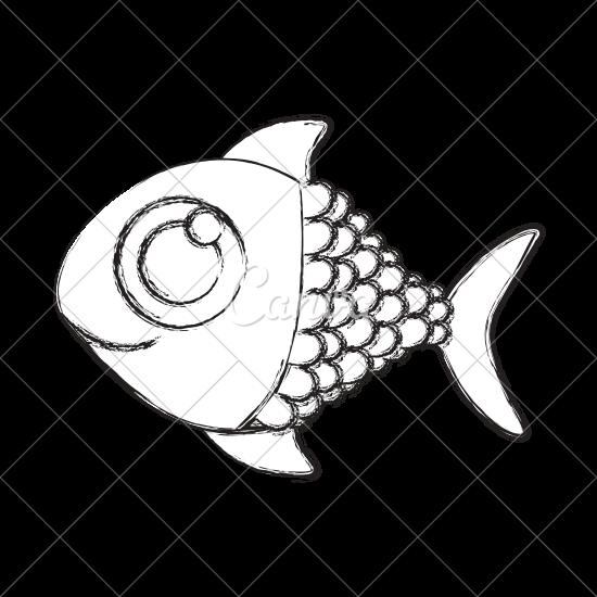 550x550 Fish Sketch