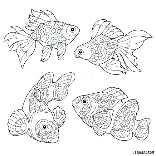 500x500 Goldfish Coloring Pages Coloring Page Of Goldfish And Clown Fish