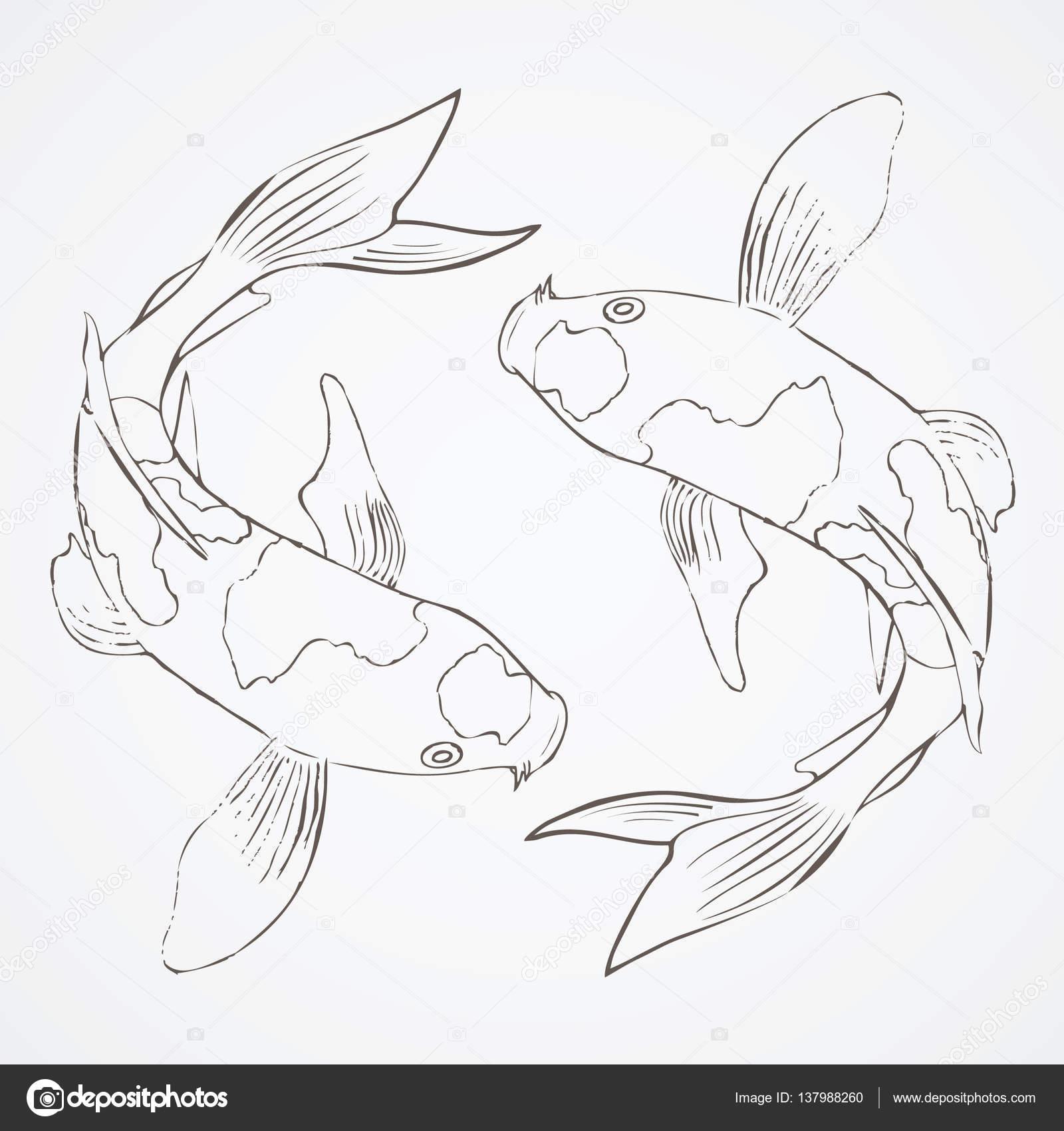 1600x1700 Koi Fish Sketch Stock Vector Takemeone