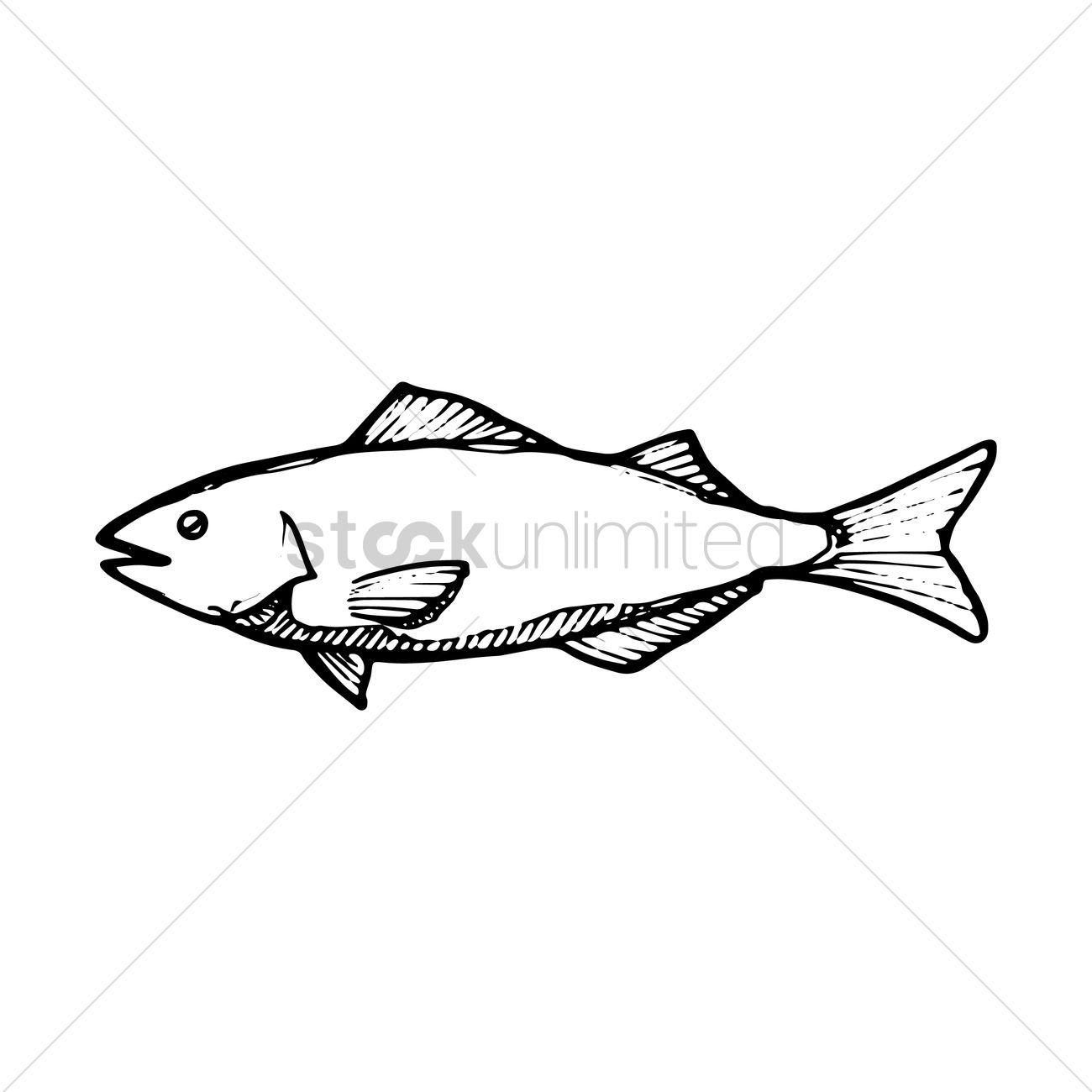 1300x1300 Tuna Fish Vector Image