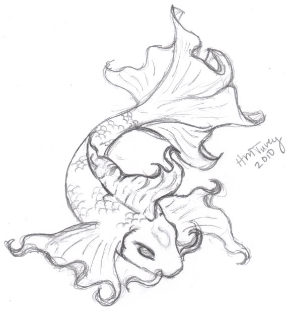 574x626 Koi Fish Drawings Koi Sketch