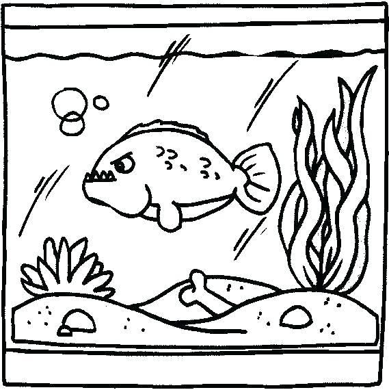 fish tank drawing at getdrawings com free for personal use fish
