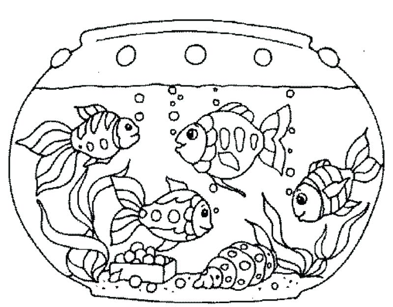 800x625 Fresh Fish Tank Coloring Page Free Download Printable Pencil And