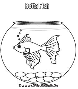 251x287 Betta Fish Coloring Sheets Coloring Pages Betta Fish