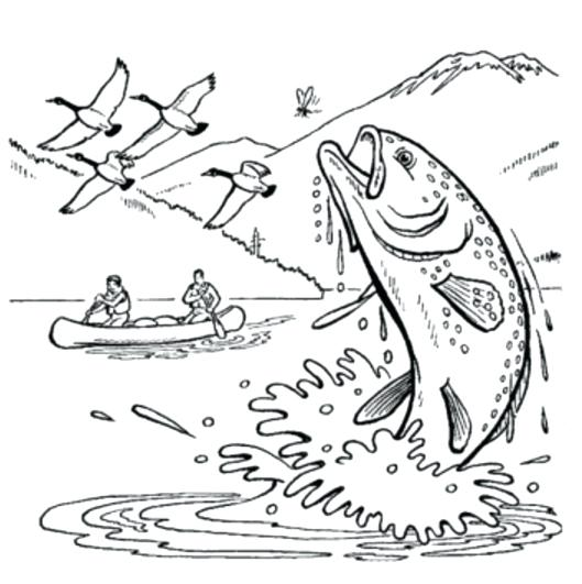 529x531 fishing coloring fishing coloring page fishing lure coloring pages - Coloring Page Of Fish
