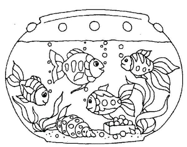 600x470 Coloring Page Fish Goldfish In The Tank