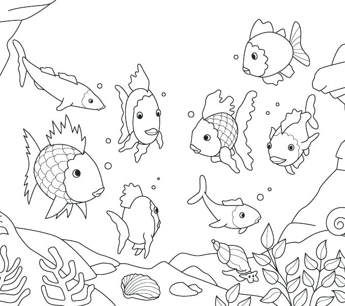 678x600 Fishing Coloring Pictures Fishing Coloring Pages Fish Coloring