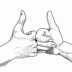 300x300 Thumbs Up Fist Bump Inspo Hands Fist Bump And Bump