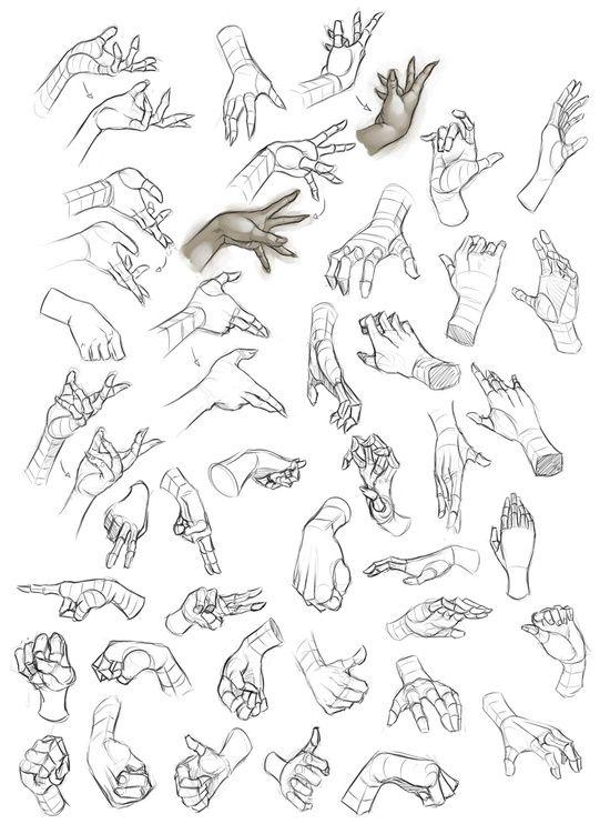 550x751 Drawing Art Hands Finger Hand Human Anatomy Digital Fingers