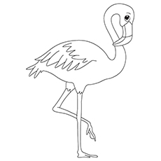 230x230 Flamingo Coloring Book Flamingo Coloring Book Pages