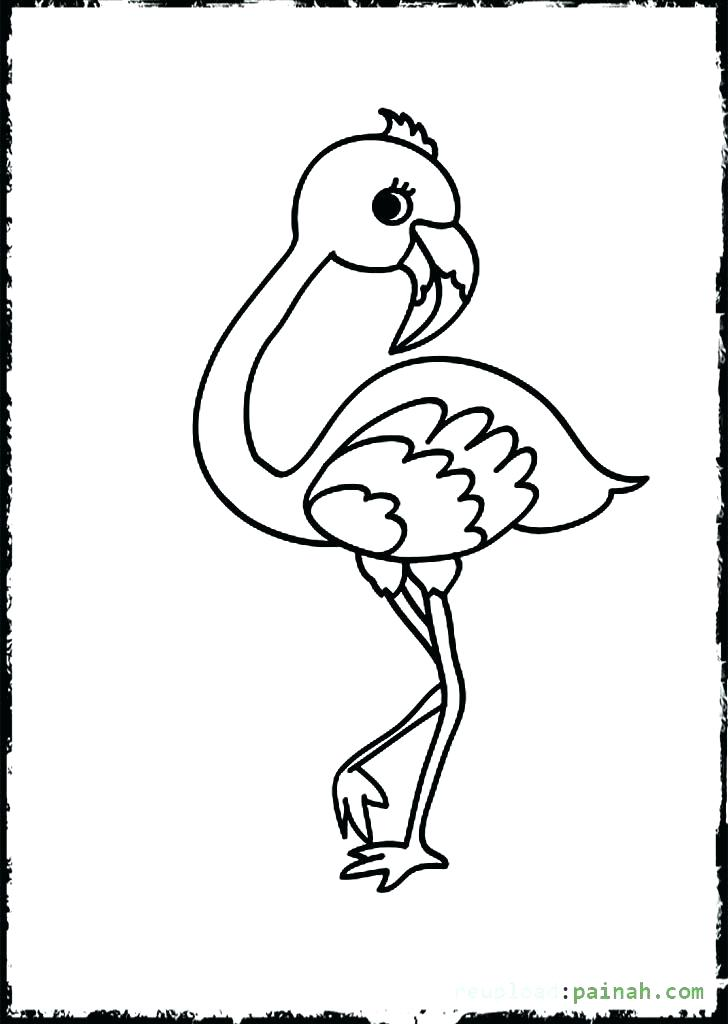 728x1024 Flamingo Coloring Pages 62 Plus Flamingo Daisy Duck
