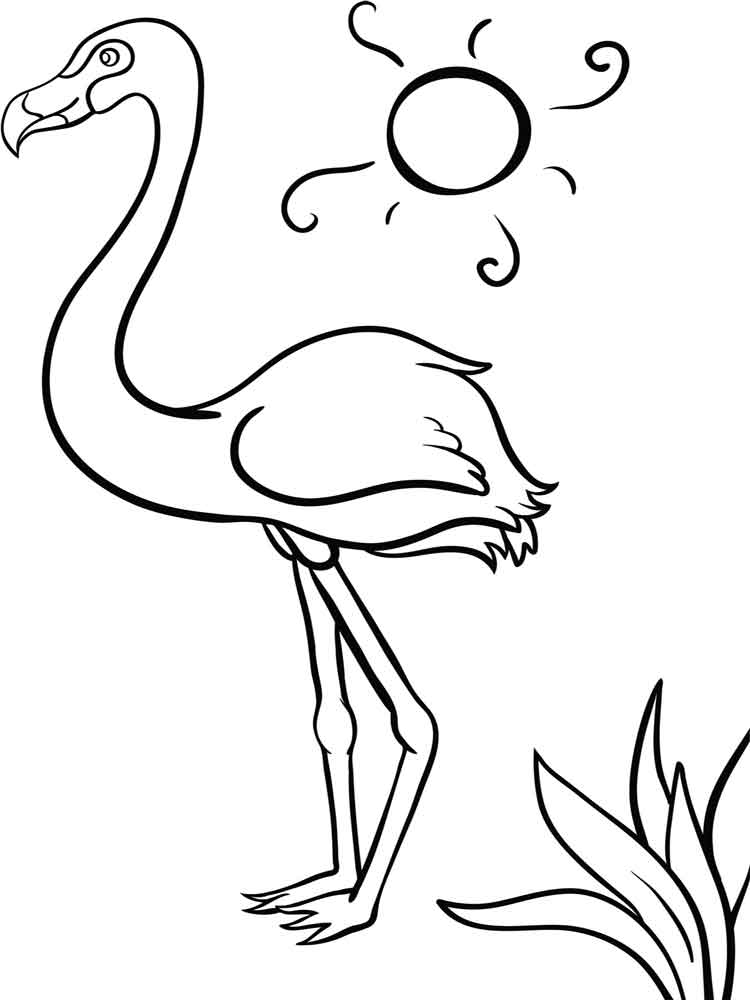 750x1000 Tropical Pink Flamingo Coloring Page Caribbean Flamingo Coloring