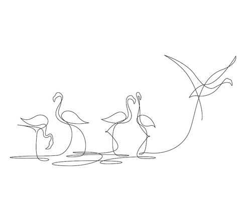 Flamingo Line Drawing
