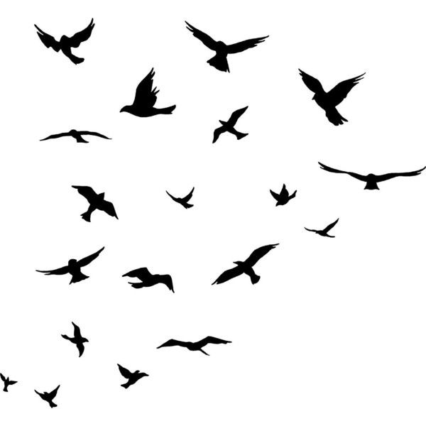 Flock Of Birds Drawing At Getdrawings Free For Personal Use