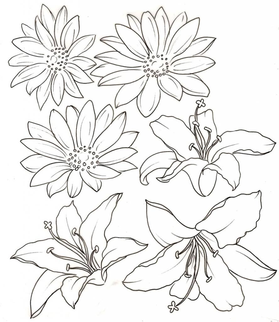 889x1024 Flower Drawings For Print Bobbie Print Floral Drawings Flowers