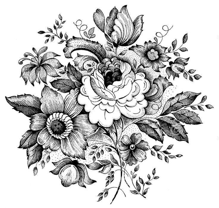 736x699 Gallery Vintage Floral Drawings,