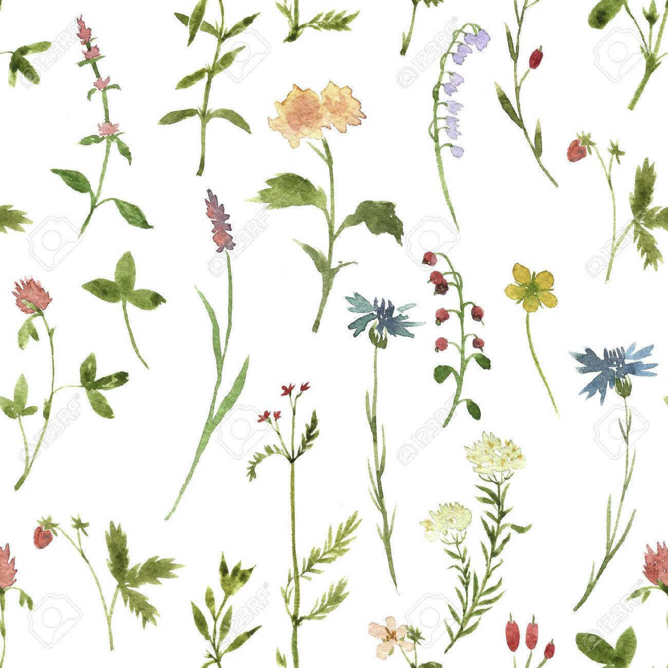 1300x1300 Seamless Floral Pattern With Watercolor Drawing Herbs And Flowers