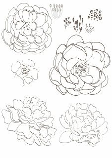 226x320 7 Best Mh Images On Floral Drawing, Draw Flowers