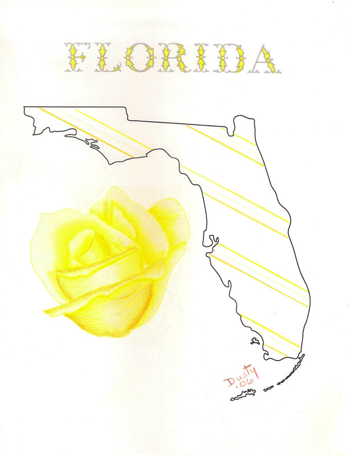 692x900 State Of Florida Drawing By Dusty Reed