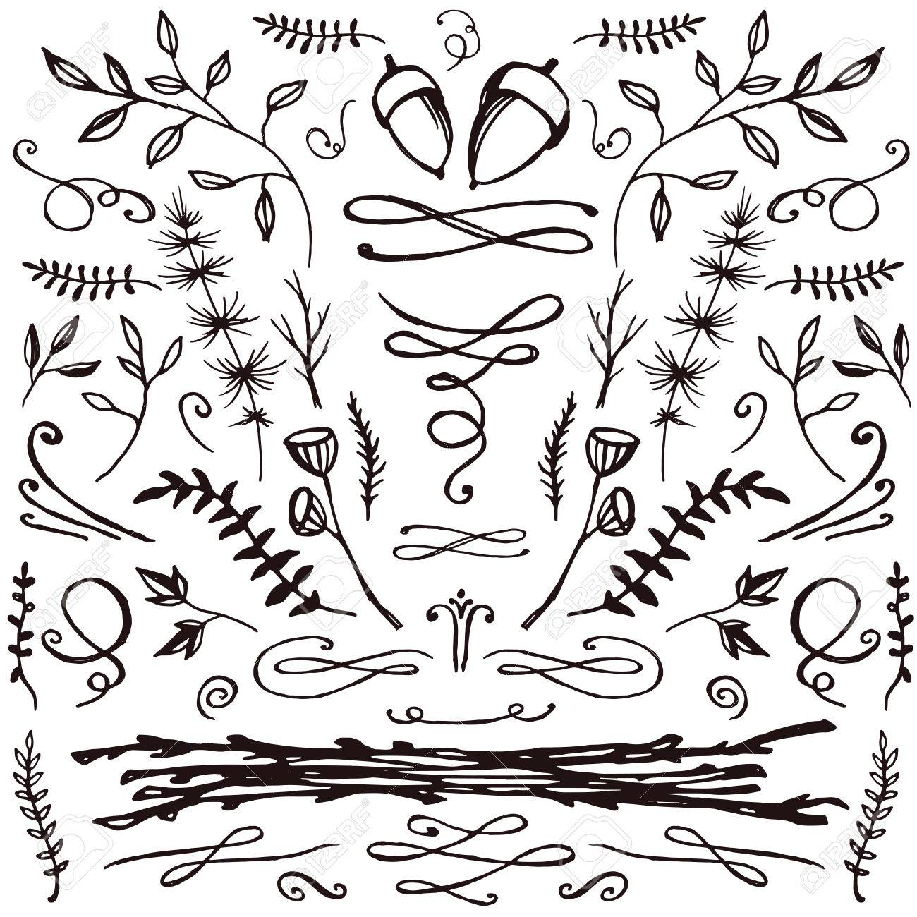 1300x1300 Set Of Hand Drawn Florals And Flourishes. Decorative Elements