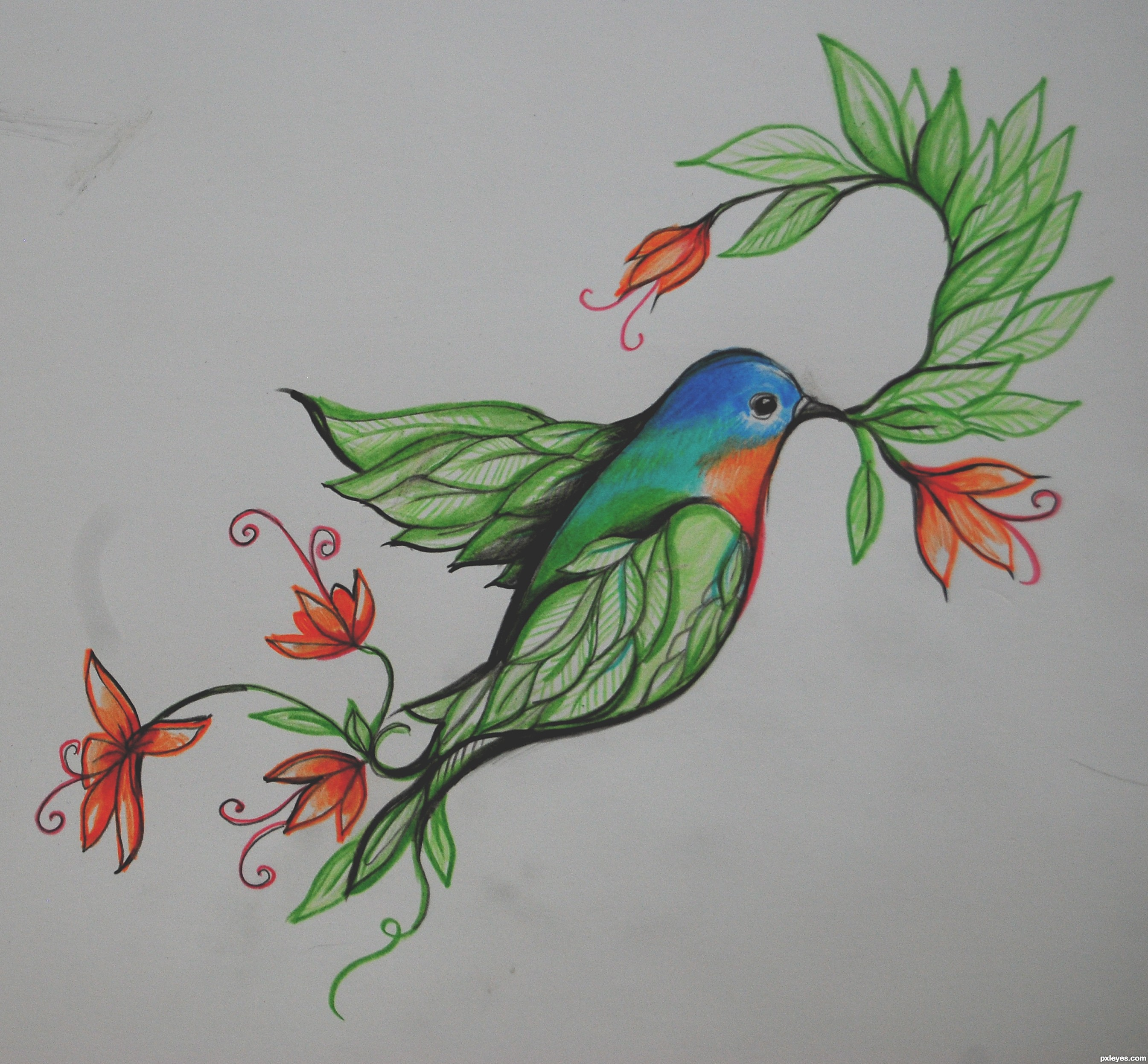 Flower And Bird Drawing at GetDrawings | Free download