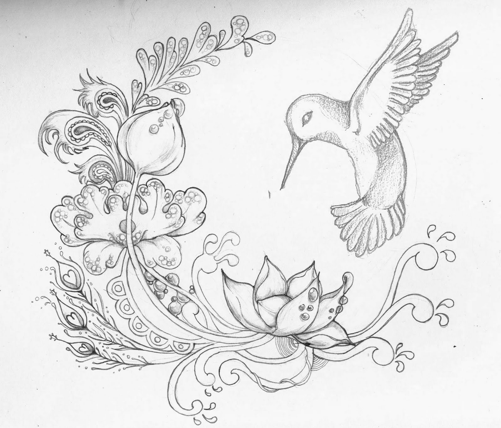 Flower And Bird Drawing at GetDrawings.com | Free for personal use ...