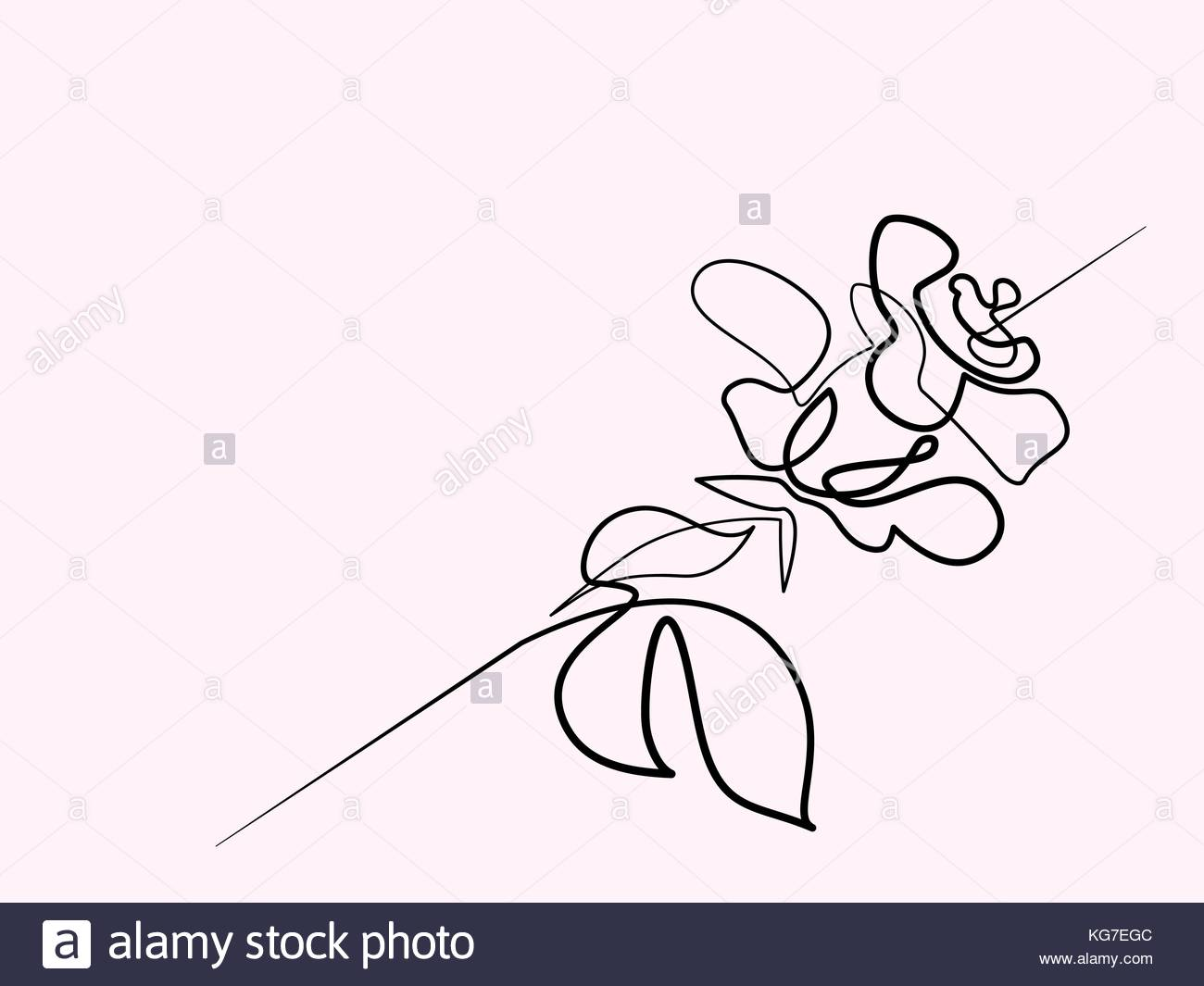 1300x1065 Continuous One Line Drawing. Beautiful Rose Flower Logo. Vector