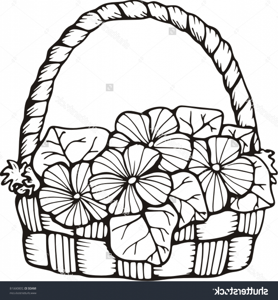 Flower Basket Line Drawing : Flower basket drawing at getdrawings free for