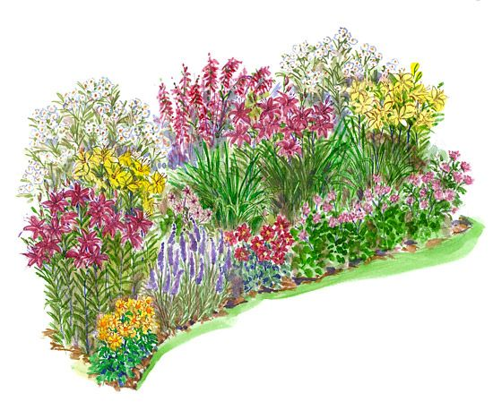 Flower Bed Drawing