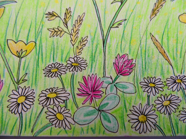 640x480 Flowers Garden Drawing For Kids Decorating Clear