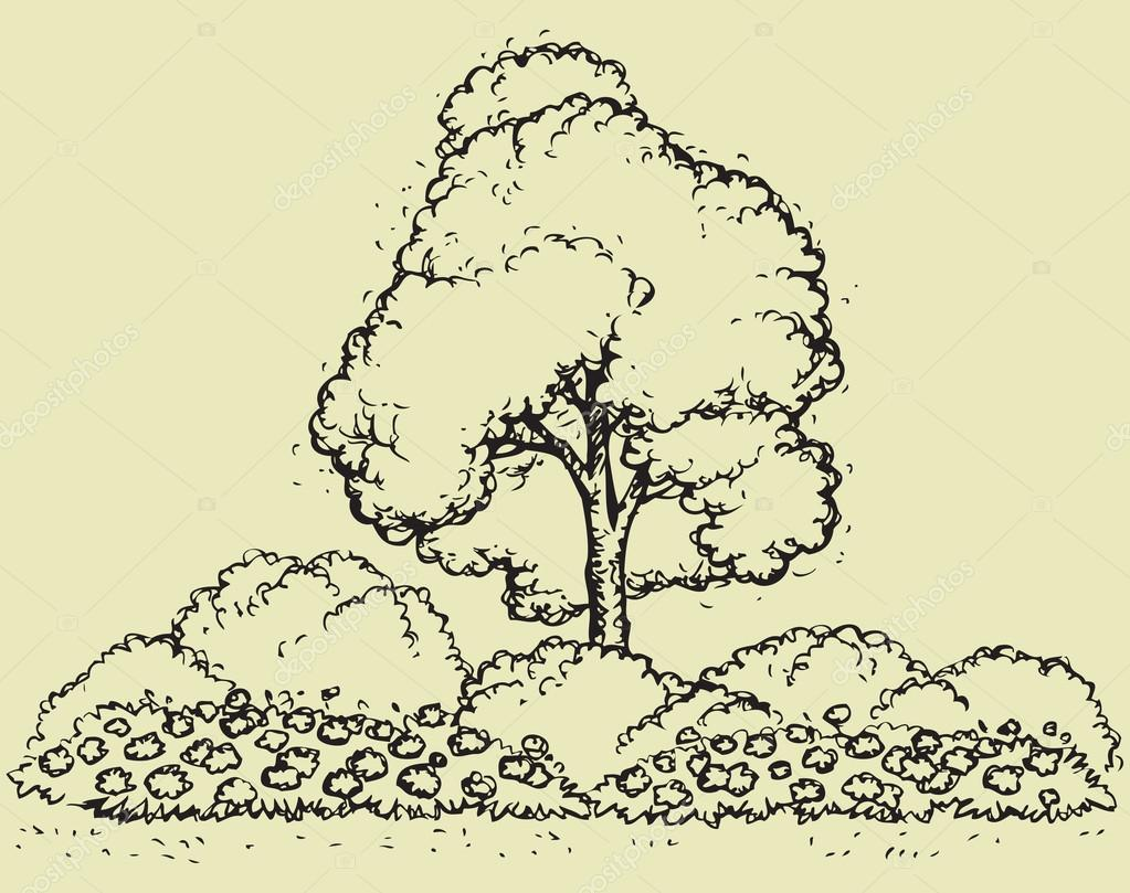 1023x809 Tree Over Flowerbed. Vector Sketch Stock Vector Marinka