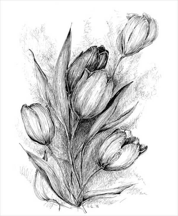 Flower Black And White Drawing
