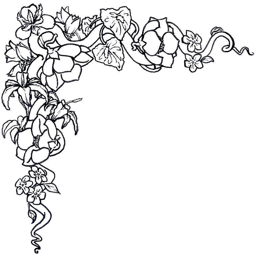 852x832 Flower Border