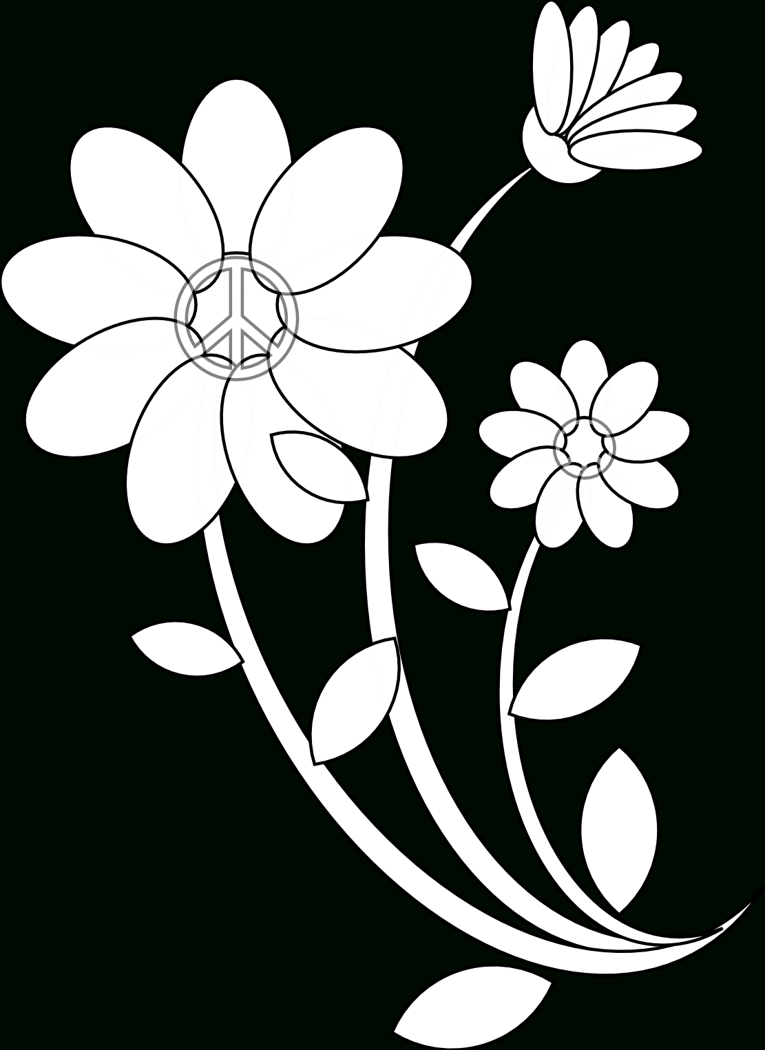 1111x1525 Flower Line Drawings Flowers Line Drawing Free Download Clip Art