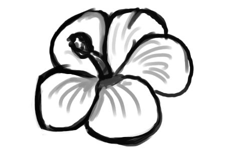 469x332 Easy Flower Sketch