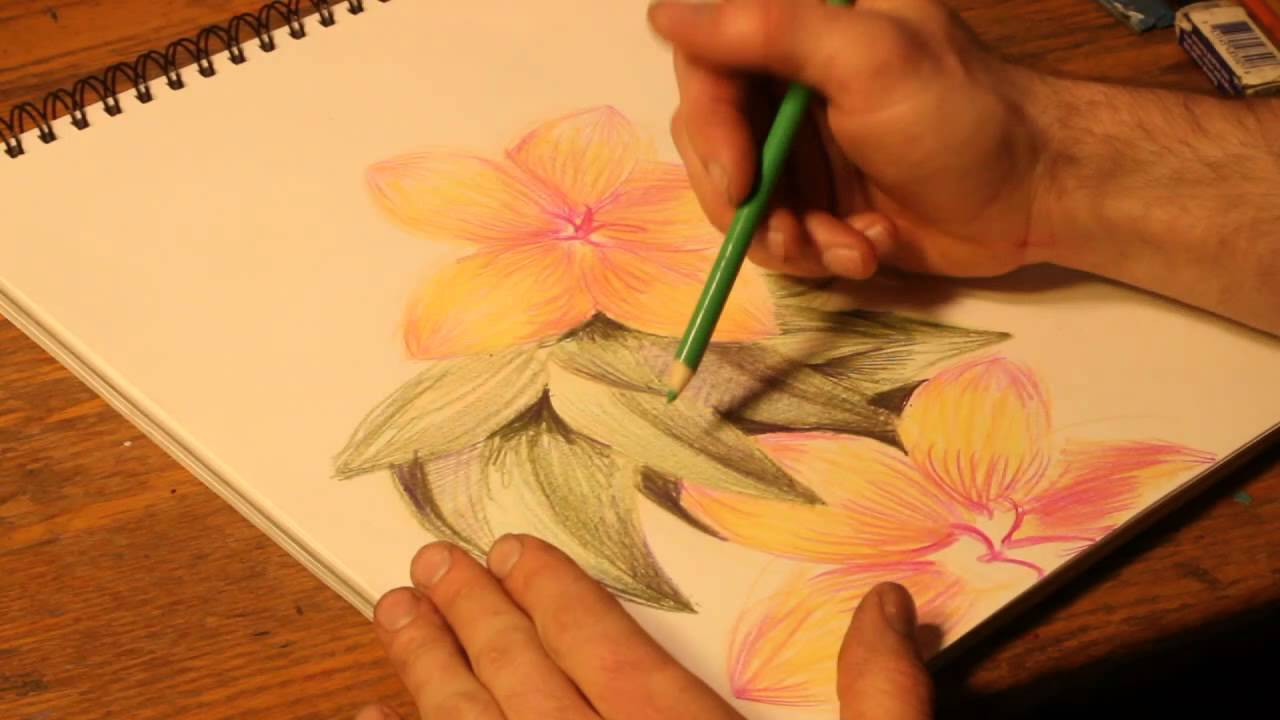 1280x720 How To Draw Flowers With Colored Pencils